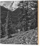 This Is Washington State No.1b - Klipchuck Wood Print by Paul W Sharpe Aka Wizard of Wonders