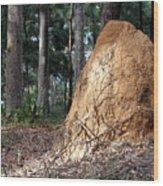 This Mound Has Termites Wood Print