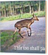 This Too Shall Pass Wood Print