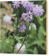 Thistle Flower Wood Print