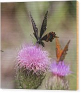 Thistle Pollinators - Large And Small Wood Print