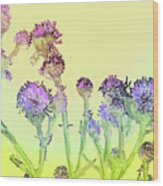 Thistles Under The Sun Wood Print