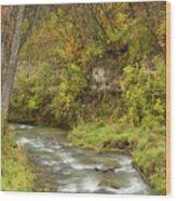 Thompson Creek Autumn 1 B Wood Print