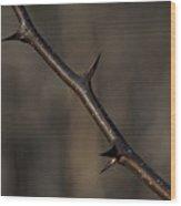 Thorn Wood Print
