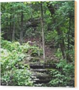 Thorncrown Chapel Setting In The Ozark Mountains Wood Print