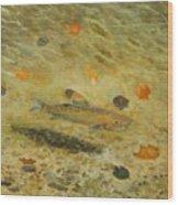 Thorndike Pond Trout Wood Print