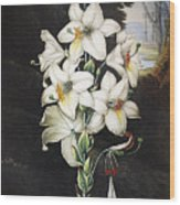 Thornton: White Lily Wood Print