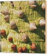 Thorntree Wood Print