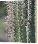 Thorny Cactus Wood Print