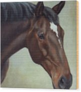 Thoroughbred Horse, Brown Bay Head Portrait Wood Print