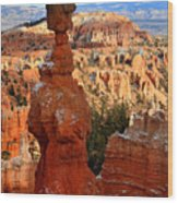 Thor's Hammer In Bryce Canyon Wood Print