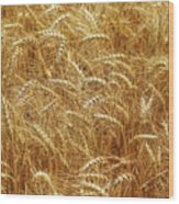 Those Beautiful Waves Of Grain Wood Print