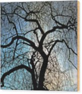 Those Gnarled Branches Wood Print