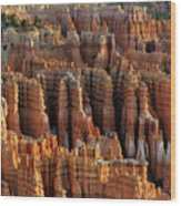 Those Hoodoo's.  Bryce Canyon Wood Print