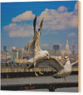 Those Jersey Gulls  Wood Print