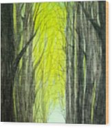 Though The Forest To The Light  Wood Print