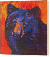 Thoughtful - Black Bear Wood Print