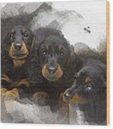 Three Adorable Black And Tan Dachshund Puppies Wood Print