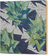 Three Aloe Wood Print