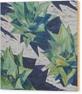 Three Aloe Wood Print