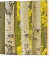 Three Autumn Aspens Wood Print