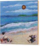 Three Beaches A Wood Print
