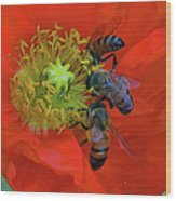 Three Bees At Lunch Wood Print