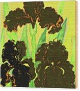 Three Black Irises, Painting Wood Print
