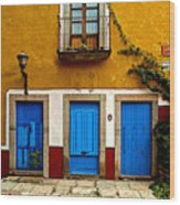 Three Blue Doors 2 Wood Print
