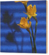 Three Cheers - Yellow Daffodils In A Red Bowl Wood Print