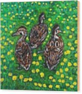 Three Ducklings Wood Print