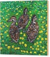 Three Ducklings Wood Print