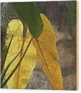 Three Exotic Leaves Wood Print