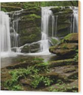 Three Falls Of Tremont Wood Print