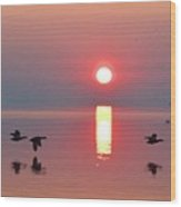 Three Geese Flying By The Sunrise  Wood Print