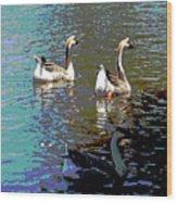 Three Geese Swimming Wood Print
