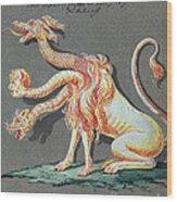 Three Headed Monster, 18th Century Wood Print
