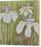 Three Irises In The Rain Wood Print
