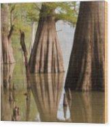Three Kings Wood Print by Jonas Wingfield