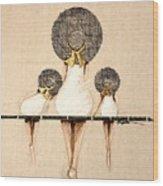 Three Ladies On A Dock  Wood Print