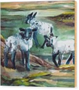 Three Lambs Wood Print