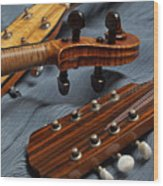 Three Musical Instrument Heads On Blue Wood Print