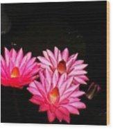 Three Night Lilies  Wood Print