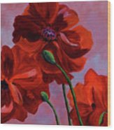 Three Oriental Poppies Wood Print