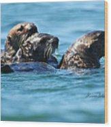 Three Otters Wood Print