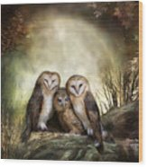 Three Owl Moon Wood Print by Carol Cavalaris