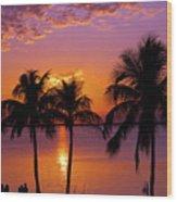 Three Palm Trees At Sunset Wood Print