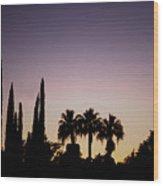 Three Palms In California At Sunset Wood Print