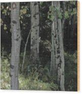 Three Pals Wood Print
