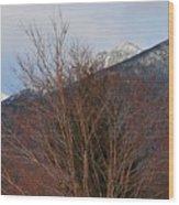 Three Peaks In Winter Wood Print